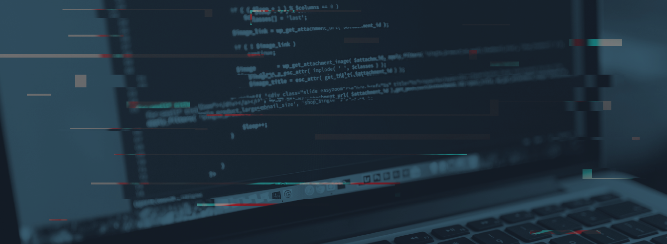 Web security for coders - Pentest - Information security assurance